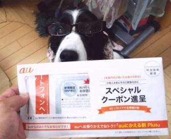 auから無料で送られてきた20,000円の割引券(auスペシャルクーポン 新規/MNP)4枚セット